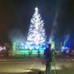 クリスマスツリー(正面)