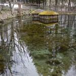 湧き水の池?