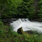 さくらの滝遠景