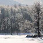雪原の向こう